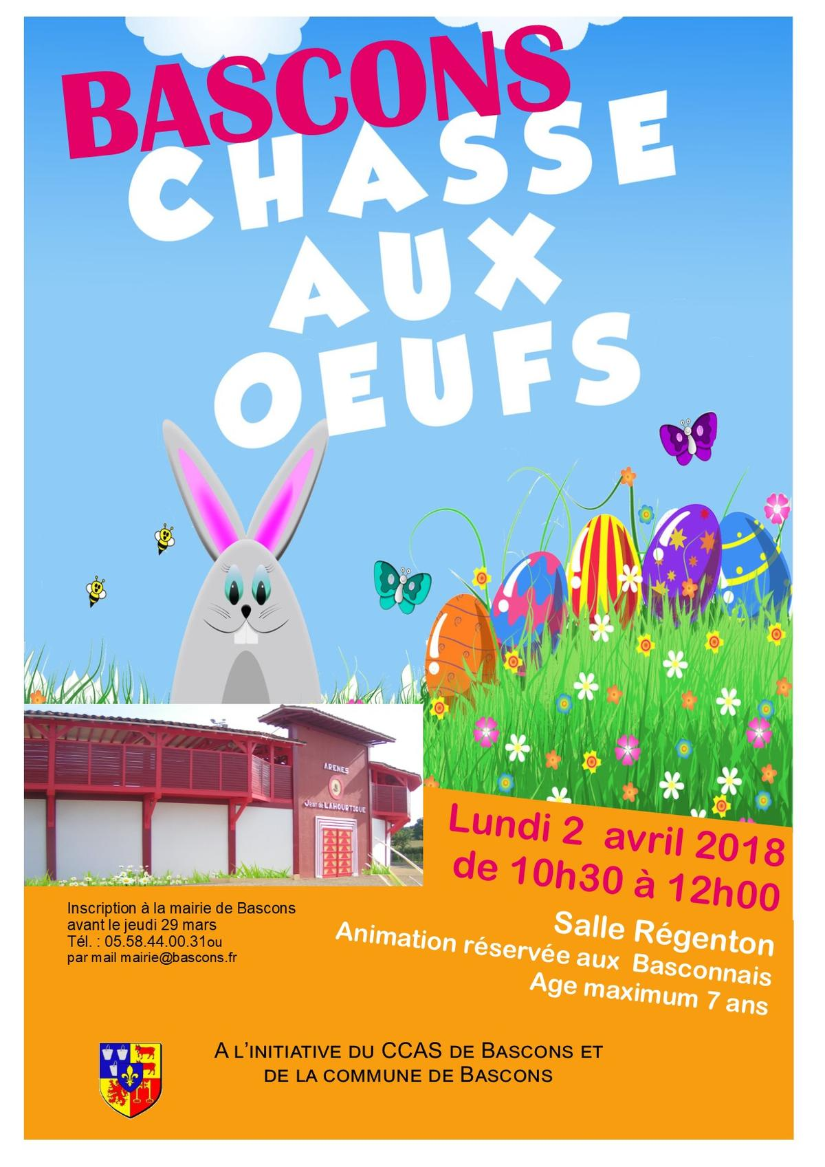 affiche Chasse aux oeufs (2)